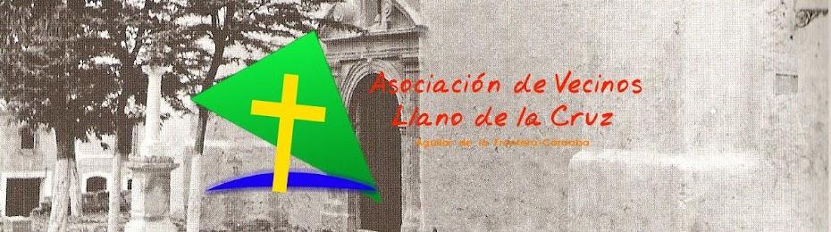 AA.VV LLANO DE LA CRUZ