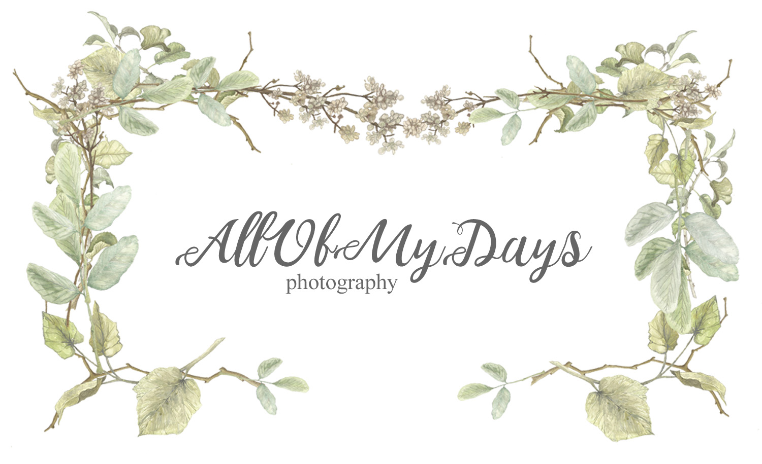 All Of My Days Photography