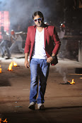 Hero Tarun Stylish Photos from Yuddham Movie-thumbnail-12