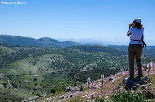 Convistas a Sierra Nevada