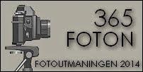 365 FOTON - fotoutmaningen 2014