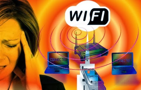 wifi harmful our bodies