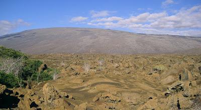 Playa Tortuga Negra, Isabela Island, Galapagos