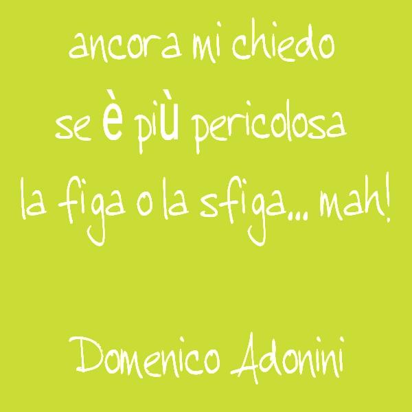aforismi di Domenico Adonini