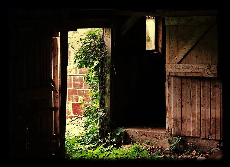 emphoka, photo of the day, BillsExplorations, Nikon Coolpix P510