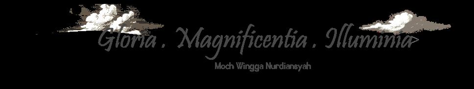 Daily Wingga
