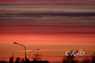 lyktstolpar i solnedgång. foto: Reb Dutius
