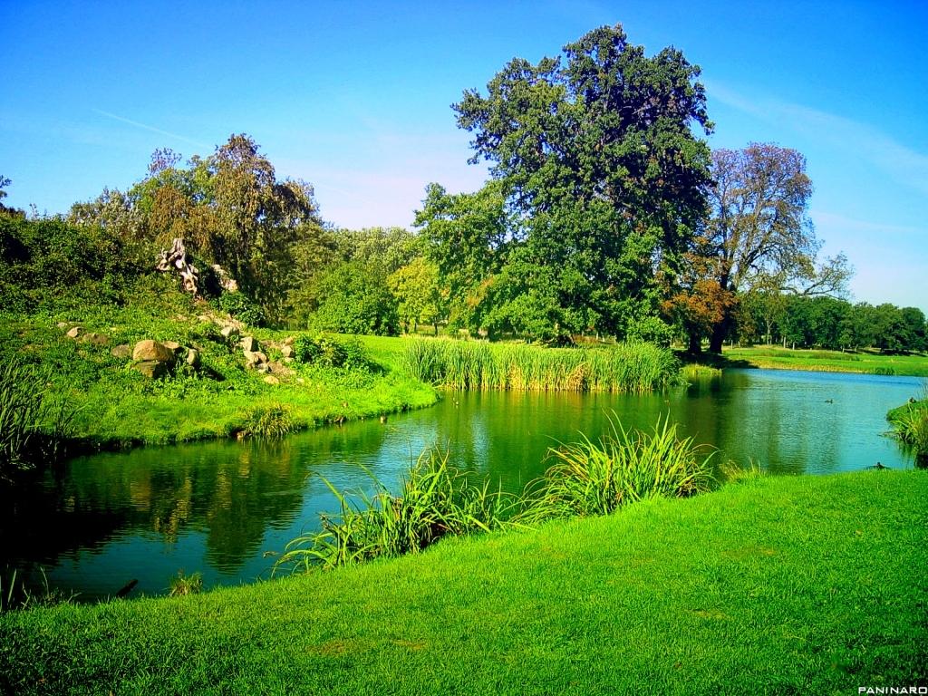 http://2.bp.blogspot.com/-6ZXx7T4htSs/TzBTpIp6U5I/AAAAAAAAAK8/S_bJYQY0DIg/s1600/Green-Nature-Wallpaper1.jpg