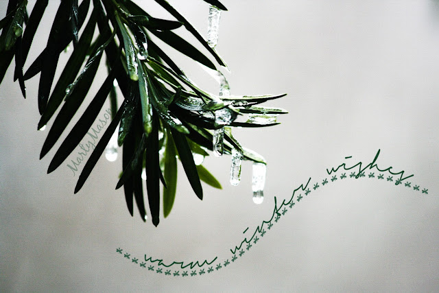 My frozen yew branch from a couple of years ago....warmed up with a Kim Klassen brush