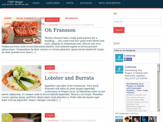 Megapress Free WordPress theme 2014