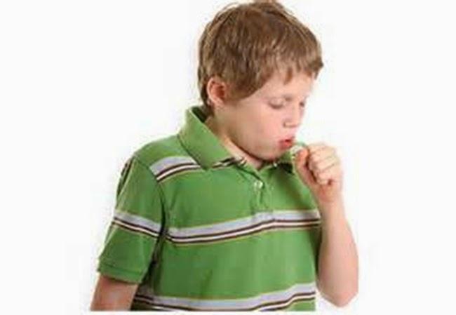 Obat Herbal Bronkitis