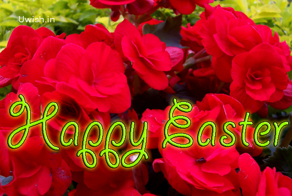 Happy easter with flowers  Happy Easter e greeting card and wishes.