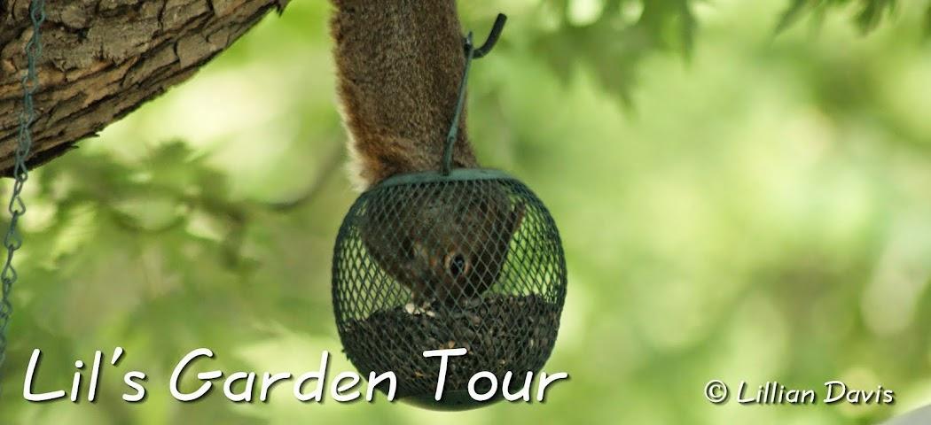 Lil's Garden Tour