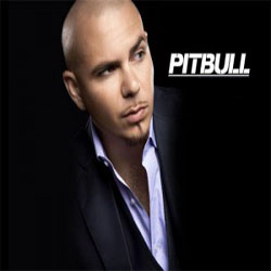 cd Pitbull   Greatest Hits Mp3