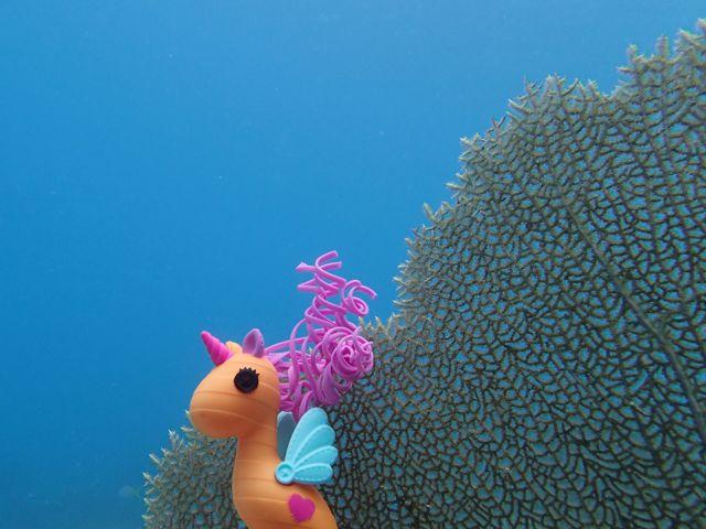 Lala-Oopsie Sea Horse