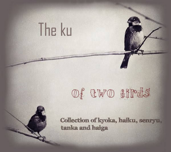The ku of two birds