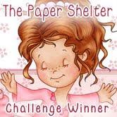 Winnaar bij de Paper Shelter