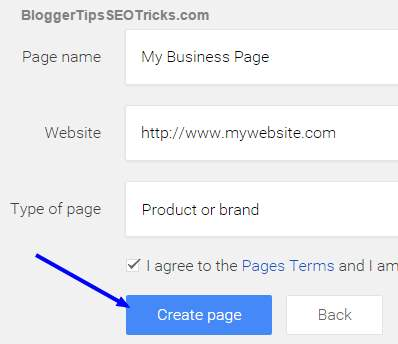 write google plus business page information