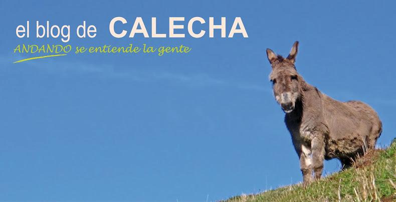 EL BLOG DE CALECHA