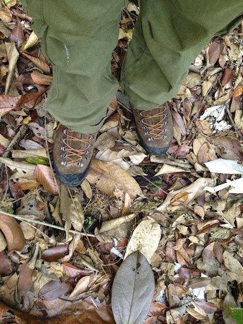 La Sportiva Pamir Gore-tex lining, Bukit Timah Nature Reserve