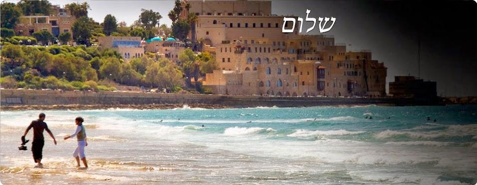 rosetta stone idioma hebreo 3 niveles totale 4 descargar gratis todos full