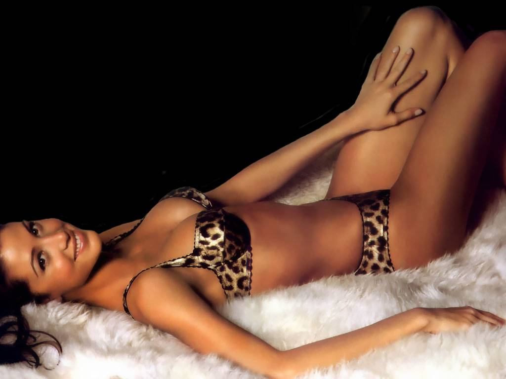 http://2.bp.blogspot.com/-6b3YMkoG6DY/To2pCAHPi9I/AAAAAAAABQ4/cPlNiKQKwHs/s1600/Shannon-Elizabeth-in-hot-bikini-2.JPG