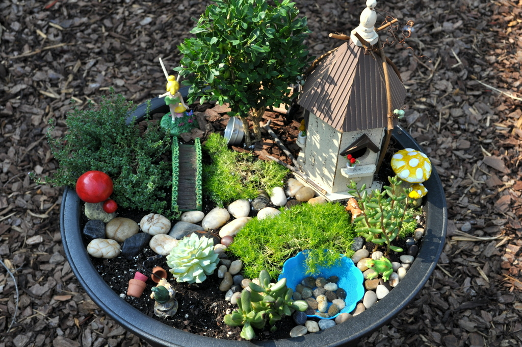 design to shine my fairy garden