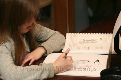 artistic pursuits, art, sketching, homeschool