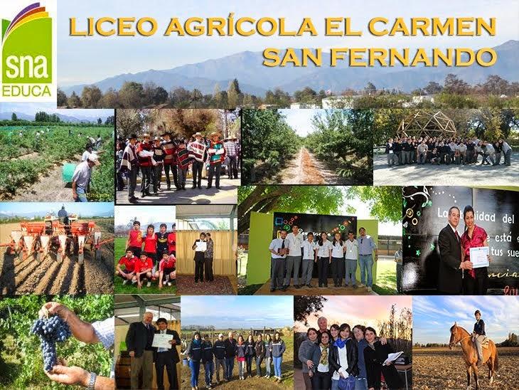 BLOG LICEO AGRICOLA EL CARMEN DE SAN FERNANDO