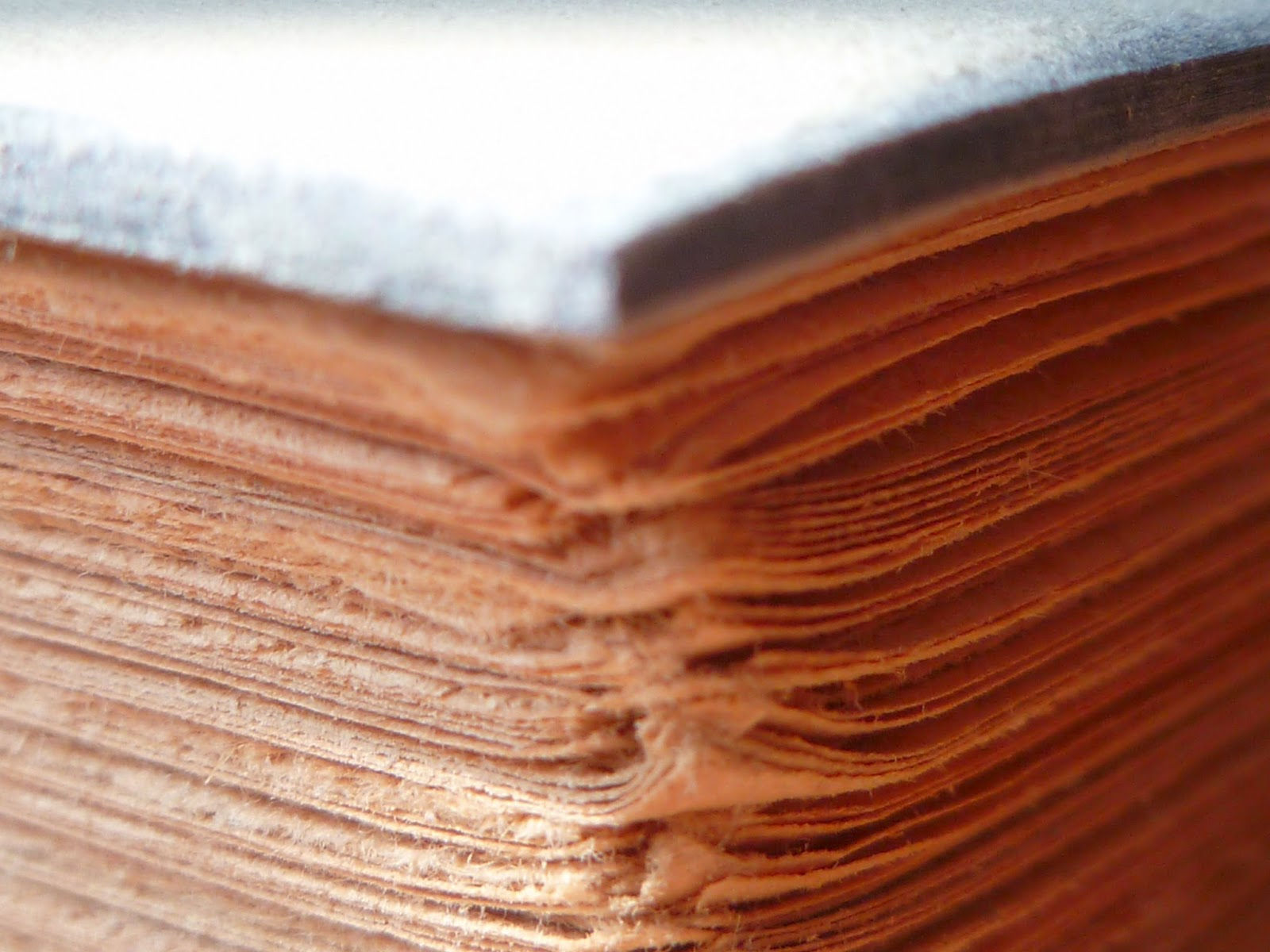 Restauration de livres anciens.: Vérification des mors des cartons #772B14