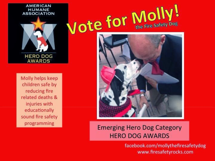 http://www.herodogawards.org/vote?nominee=16165143