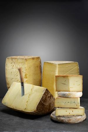 le fran 231 ais pour tous les diff 233 rents types de fromages