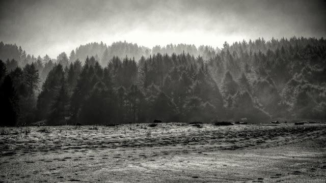 Week 9: Landscape