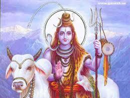 Shiva forex