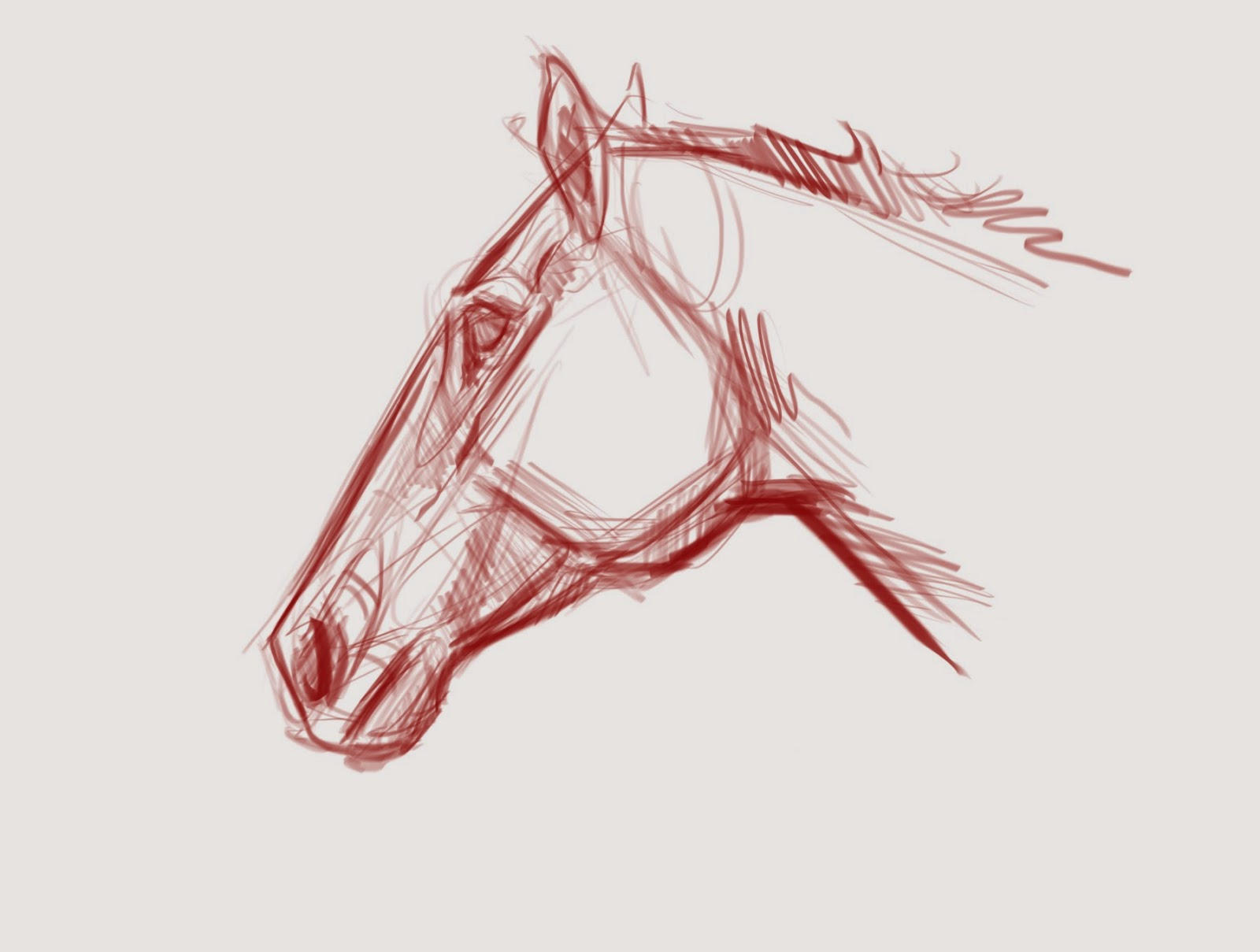 Joe Weatherly Fine Art: Horse drawing demos and diagrams.