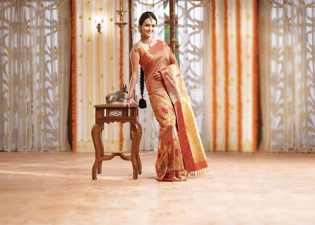 beautiful wedding sarees choice