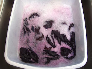 Tamarack Shack Low Immersion Dyeing