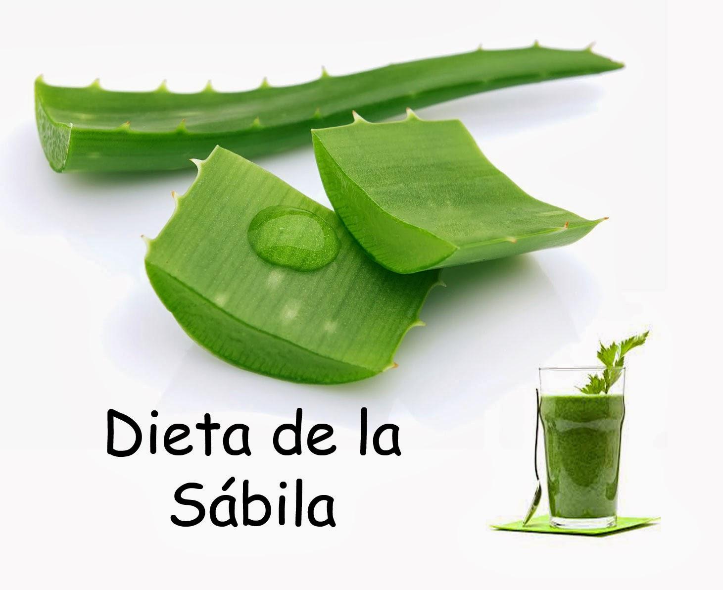 DIETA DE LA SÁBILA SIN BAJAR DE PESO