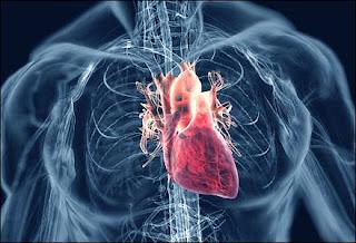 Nursing Care Plan for Rheumatic Heart Disease
