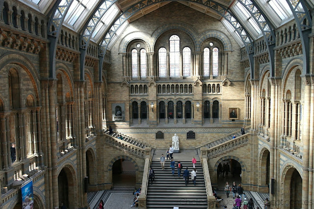 Museo natural de historia Londres