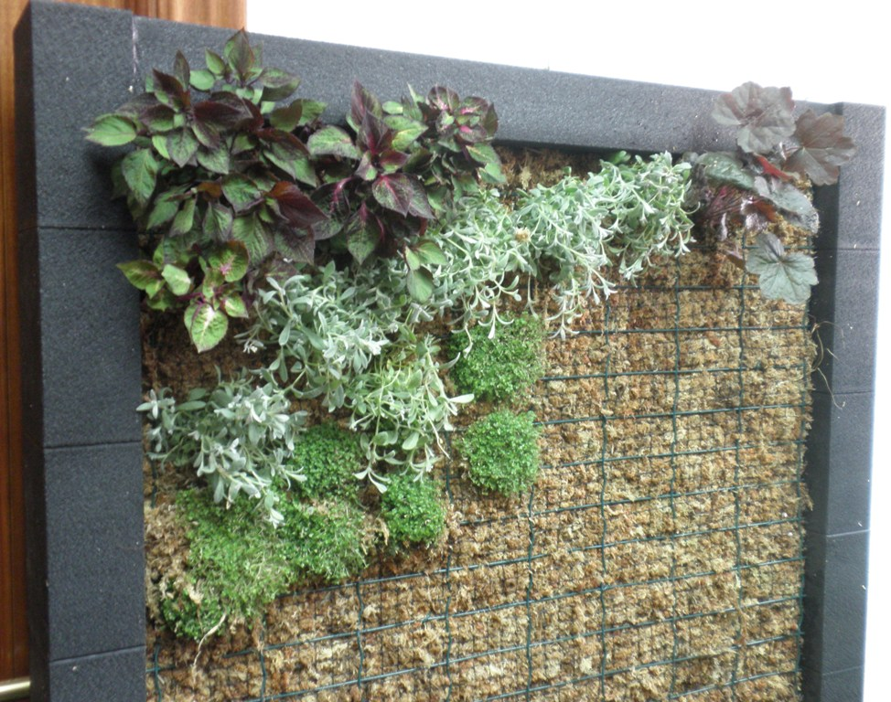 Abril 2013 jardiner a y paisajismo paisajismo sostenible for Jardines verticales espana