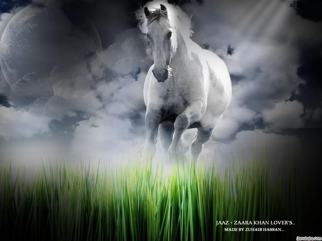 amazing photos most powerful horse wallpaper