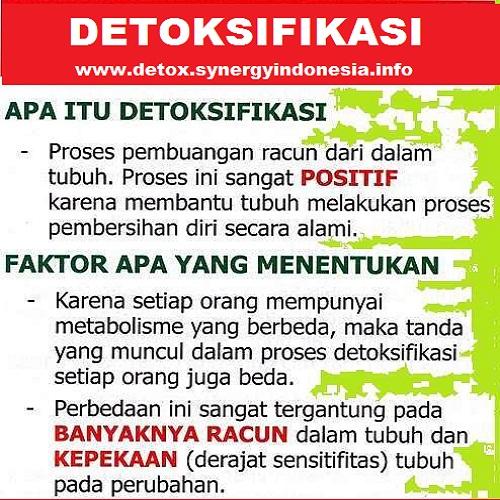 Detox Synergy - Detox Synergy Indonesia