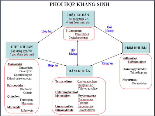 Bảng chỉ dẫn nguyên tắc phối hợp kháng sinh