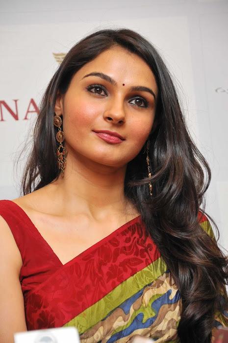 andrea jeremiah spicy in saree actress pics