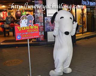 Kafe Bertema Anjing