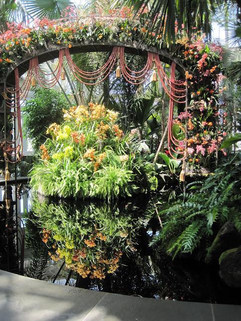 Calling it Home New York Botanical Gardens