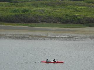russian river kayakers