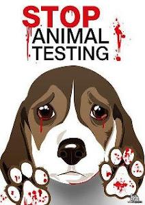 Contra a utilização de animais em testes