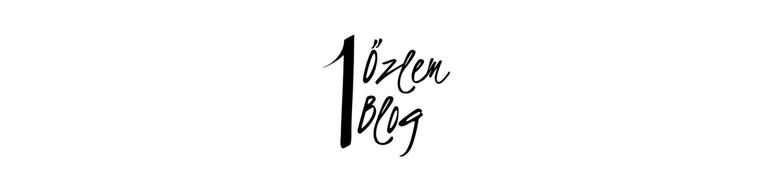 Bir Özlem Bir Blog
